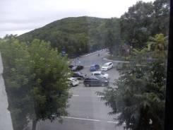 2-комнатная, улица Владивостокская 56. Ленинская, агентство, 42 кв.м. Вид из окна днём