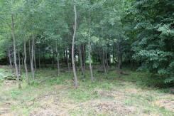 Продажа земельного участка в деревне Жедочи. 1 500 кв.м., собственность, от частного лица (собственник)