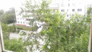 1-комнатная, улица Полушкина 51. Слабода, частное лицо, 33кв.м. Вид из окна днём