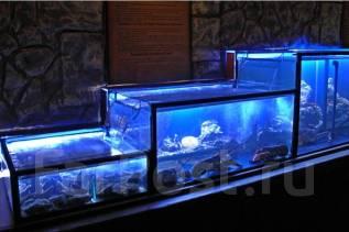Изготовление морских и пресноводных аквариумов , ремонт