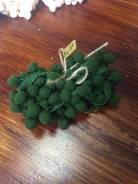Лента с помпонами насыщенный зелёный