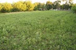 Продам земельный участок с. Григорьевка 53 сотки в центре села, адрес. 5 300 кв.м., собственность, электричество, вода, от частного лица (собственник...