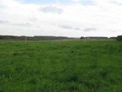 Земельный участок в Хасанском районе, с. Рисовая Падь. Фото участка