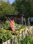 Продам ухоженный дачный участок на 1-х садах, рядом с остановкой. От частного лица (собственник)