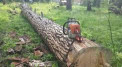 Обрезка, валка, вырубка деревьев