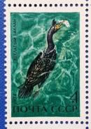 1972 СССР. Фауна. Водоплавающие птицы. Хохлатый баклан. 1 м Чистая