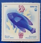 1975 СССР. ''Экспо-75''. Море и его будущее. Хризиптера, 1м Чистая