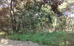 Продается земельный участок район Весенней. 1 230кв.м., собственность, электричество, вода, от агентства недвижимости (посредник). Фото участка