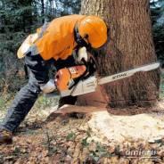 Спил и подрезка деревье