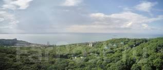 1-комнатная, проспект 100-летия Владивостока 180 стр. 1. Заря, застройщик, 51 кв.м. Вид из окна днём