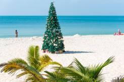 Вьетнам. Нячанг. Пляжный отдых. Туры во Вьетнам из Хабаровска. Новый год.