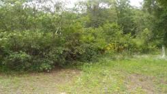 Продаю участок 20 сот. возле моря экологичный. р-н возле снт Пионер. 2 000кв.м., собственность, от частного лица (собственник). Фото участка