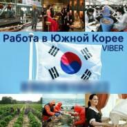 Трудоустройство в Южной Корее