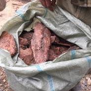Опилки и древесная кора.
