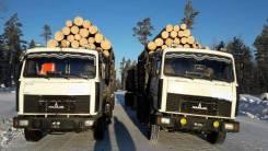 МАЗ 551605-280. Продаются два МАЗА 5516-05 EURO 2, 14 850 куб. см., 20 000 кг.