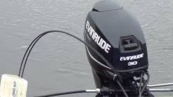 Evinrude. 30,00л.с., 2-тактный, бензиновый, нога L (508 мм), Год: 2010 год