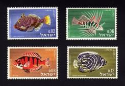 Израиль 1963.12.16 Mi291-294 MNH рыбы