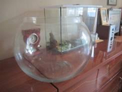 Аквариум круглый 10 л небольшая трещинка поверхностная.