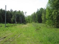 Земля ИЖС в сосновом бору Томска. 600кв.м., собственность, электричество