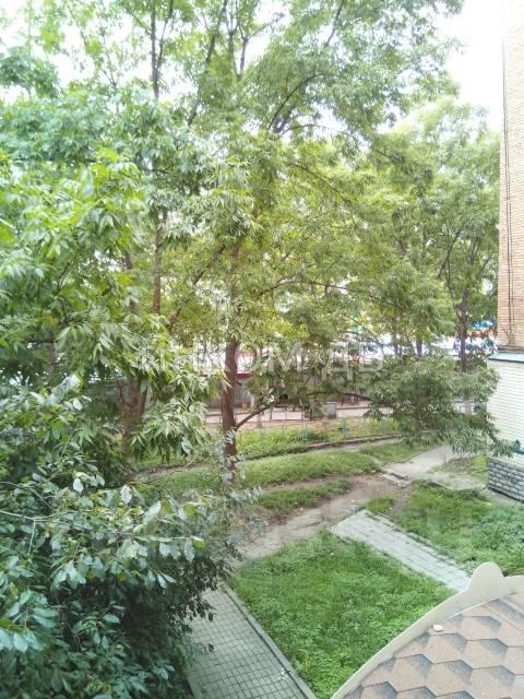 1-комнатная, улица Адмирала Юмашева 4. Баляева, 34кв.м. Вид из окна днем