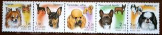Сцепка. Собаки. Россия. 2000 г.