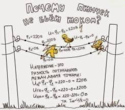 Физика , математика
