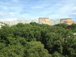 Гостинка, улица Кирова 62. Вторая речка, 24кв.м. Вид из окна днем