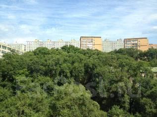 Гостинка, улица Кирова 62. Вторая речка, 24 кв.м. Вид из окна днем
