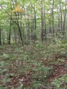 12 соток, ИЖС, Черная Речка (перевал). 1 188 кв.м., собственность, от агентства недвижимости (посредник). Фото участка