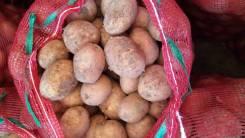 Картофель.