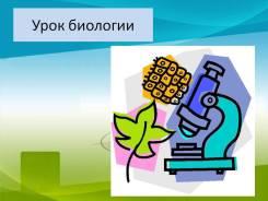 Занятия по химии, биологии, географии.