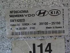 Блок управления (ЭБУ) Hyundai Sonata NF 2005-2010