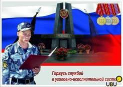Инспектор службы безопасности. ФКУ ИК-29. Улица Дзержинского 1