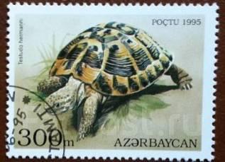 Марка. Черепаха. Азербайджан. 1995 г.