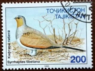 Марка. Птица. Таджикистан. 1995 г.