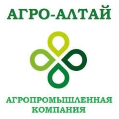 Менеджер по подбору персонала. ООО Агро-Алтай. Новосибирск