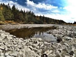 Гора Ольховая джип-тур 2700р. Озера есть!