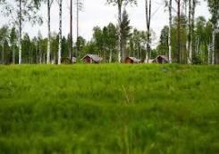 Поиск земельных участков в Партизанском районе
