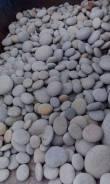 "Продам камни ""голыш"" по вашим размерам и форме. Цена от 10 р. за кг."