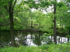 Эксклюзивный участок с озером ( поворот на Соловей ключ. 1 600 кв.м., собственность, аренда, электричество, вода, от агентства недвижимости (посредни...
