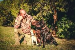 Дрессировка собак, коррекция поведения, Кинолог, натаска легавых