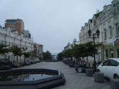 Продается помещение в Центре во Владивостоке. Улица Адмирала Фокина 9, р-н Центр, 55 кв.м.