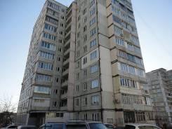 1-комнатная, улица Светланская 133. Центр, частное лицо, 33 кв.м. Дом снаружи