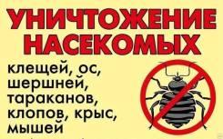 Уничтожение Насекомых Тараканы, клопы, блохи! Договор, Гарантия Скидки