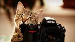 Предметная фотосъёмка для сайтов, для интернет магазинов, фотосессии.