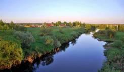 Участок на реке. Сосновый бор тихое, дачное местечко под г. Талдомом. 1 200 кв.м., собственность, электричество, вода, от агентства недвижимости (пос...