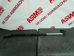 Амортизатор крышки багажника. Toyota Ipsum, CXM10G, SXM10, SXM10G