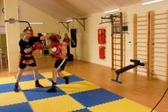 Индивидуальные тренировки по боксу, кикбоксингу и силовой подготовке.