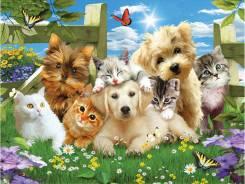 Грумер предлагает услуги парикмахера собакам и котам разных пород!