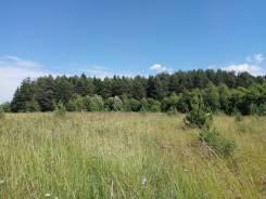 Продаю земельный участок в д. Грибцово Рузский район Московская област. 1 500 кв.м., собственность, от частного лица (собственник)